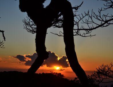 Climbing & Night Walk Tour