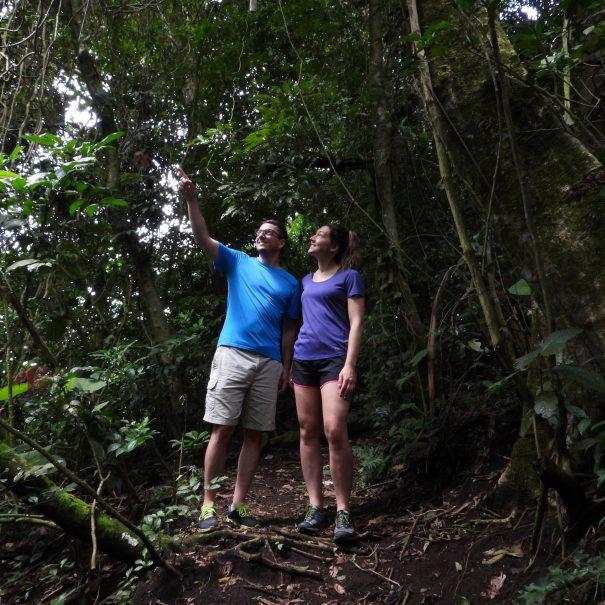 Trail Hiking Tour